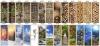 Двери с фотопечатью в сауну АКМА виды рисунков